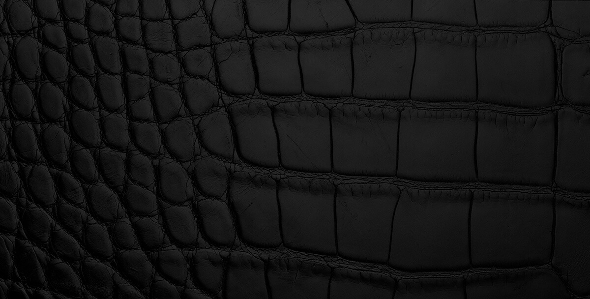 Detail shot of croc-embossed black leather